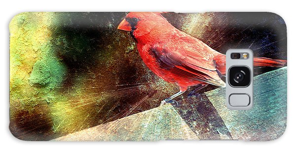 Cardinal  Galaxy Case by Elaine Manley