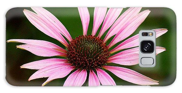 Coneflower - Echinacea Galaxy Case by Lisa L Silva