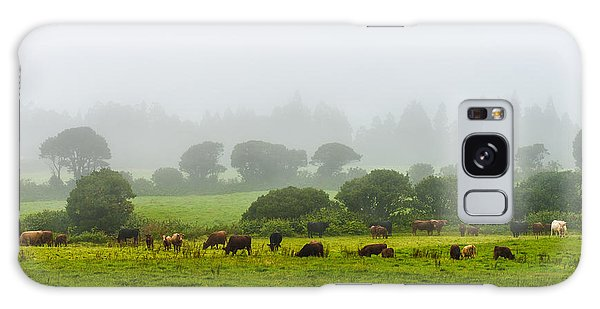 Cows At Rest Galaxy Case