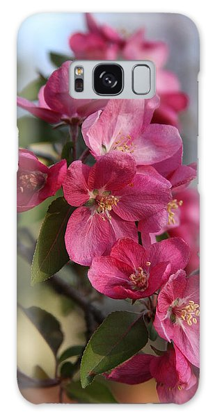 Crabapple Blossoms Galaxy Case by Vadim Levin