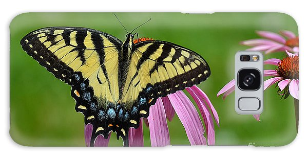 Eastern Tiger Swallowtail Galaxy Case