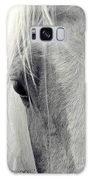 Equine Study Galaxy Case by Laurinda Bowling