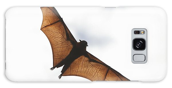 Flying Bat Galaxy Case