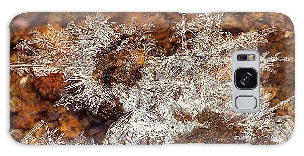 Frozen Beauty Aka Ice Is Nice Viii Galaxy Case by Bijan Pirnia