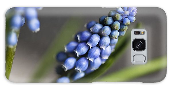 Grape Galaxy Case - Grape Hyacinth by Nailia Schwarz