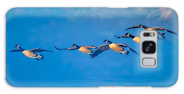 Incoming Geese Galaxy Case by Brian Stevens