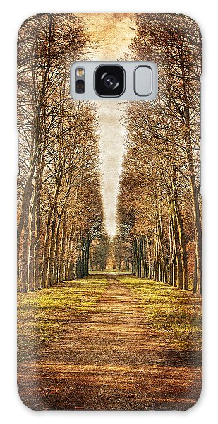 Galaxy Case featuring the photograph Path In The Woods / Versailles by Barry O Carroll