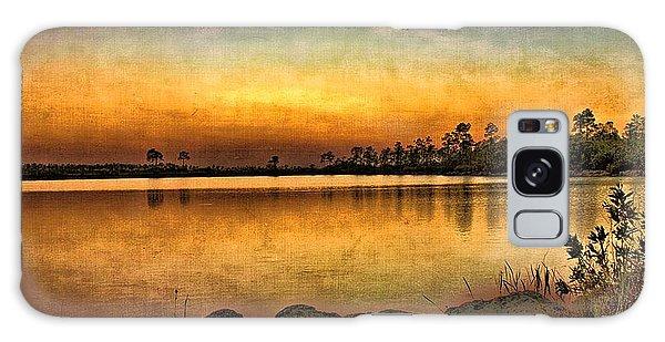 Pine Glades Lake Galaxy Case by Anne Rodkin