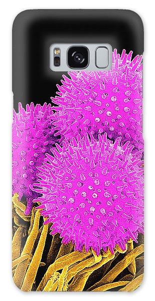Pollen Galaxy Case - Pollen Grains by Susumu Nishinaga