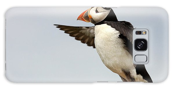 Puffin On The Farne Islands Great Britain Galaxy Case