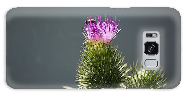 Purple Flower And Bee Galaxy Case