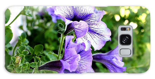 3 Purple Petunias Galaxy Case
