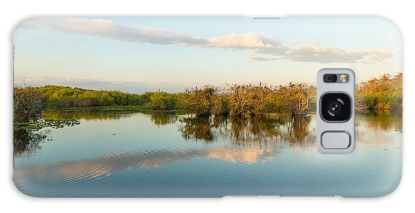 Anhinga Galaxy Case - Reflection Of Trees In A Lake, Anhinga by Panoramic Images