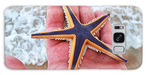 Royal Starfish - Ormond Beach Florida Galaxy Case