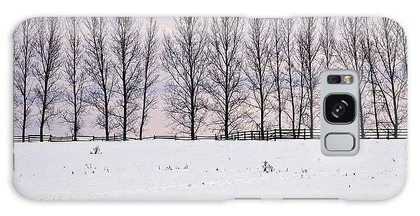 Framing Galaxy Case - Rural Winter Landscape by Elena Elisseeva