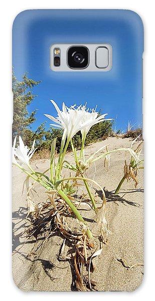 Sea Lily Galaxy Case - Sea Daffodil (pancratium Maritimum) by Bruno Petriglia/science Photo Library