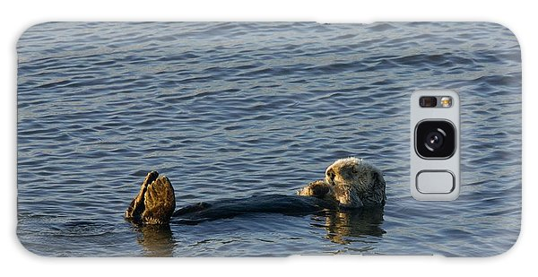 Otter Galaxy Case - Sea Otter by Bob Gibbons/science Photo Library