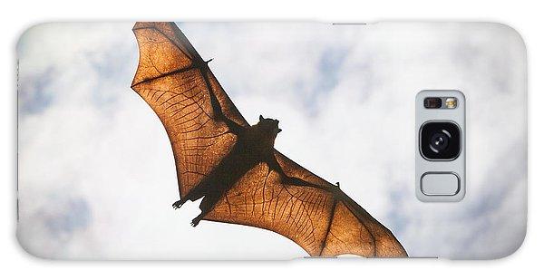 Spooky Bat Galaxy Case by Craig Dingle