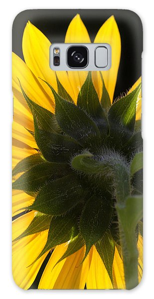 Sunshine Galaxy Case by Michael Friedman