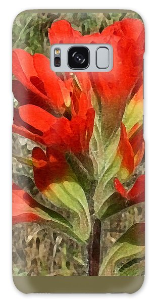 Texas Paintbrush Galaxy Case