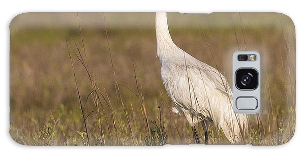 Whooping Crane Galaxy Case
