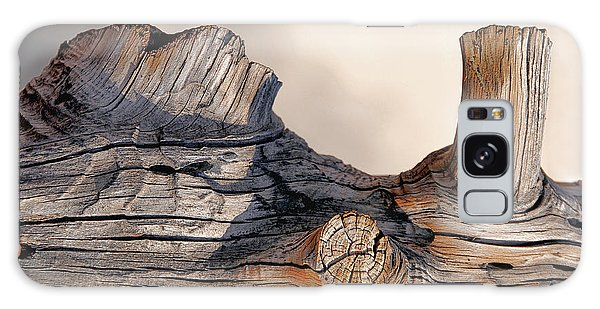 Wooden Landscape Galaxy Case