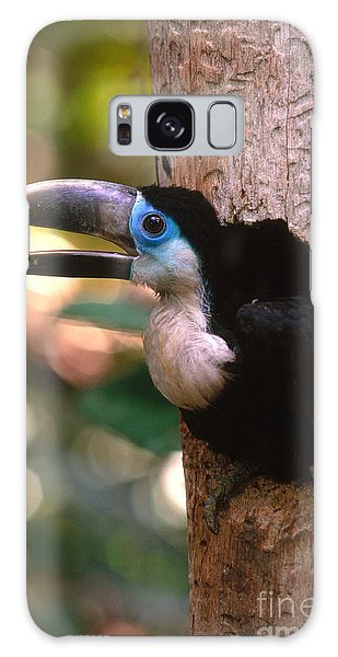 Yellow-ridged Toucan Galaxy Case by Art Wolfe