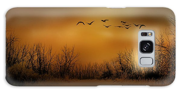 3782 Galaxy Case by Peter Holme III