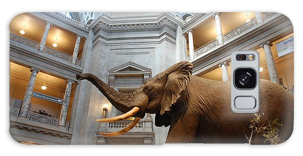 Bull Elephant In Natural History Rotunda Galaxy Case