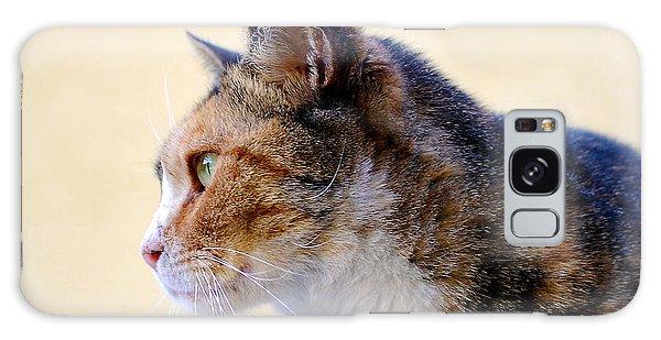 Cat Galaxy Case