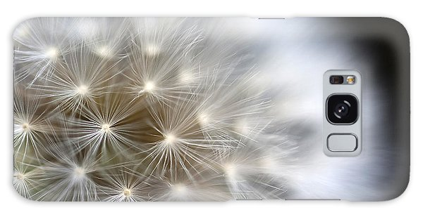 Dandelion Backlit Close Up Galaxy Case