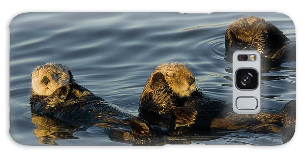 Otter Galaxy Case - Sea Otters by Bob Gibbons/science Photo Library