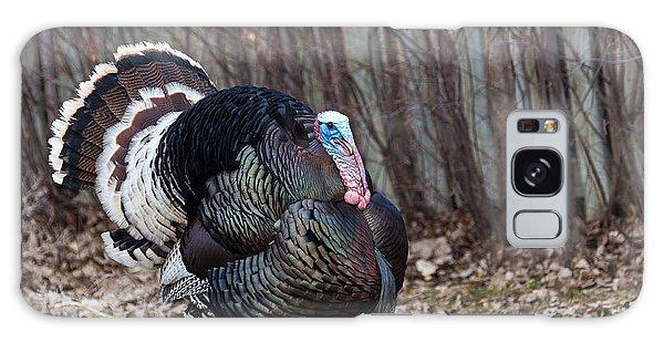Strutting Turkey Galaxy Case