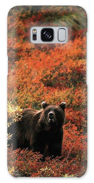 Grizzly Bears Galaxy Case - Usa, Alaska, Denali National Park by Hugh Rose