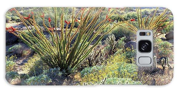 Desert Flora Galaxy Case - Usa, California, Anza-borrego Desert by Jaynes Gallery