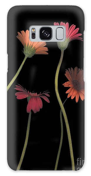 4daisies On Stems Galaxy Case