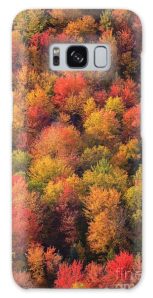 Aerial View Of Fall Foliage In Vermont Galaxy Case