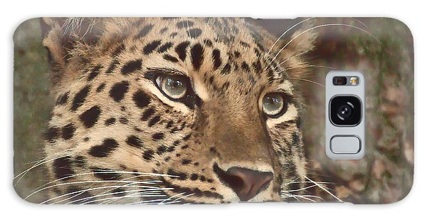 Amur Leopard Galaxy Case by Chris Boulton