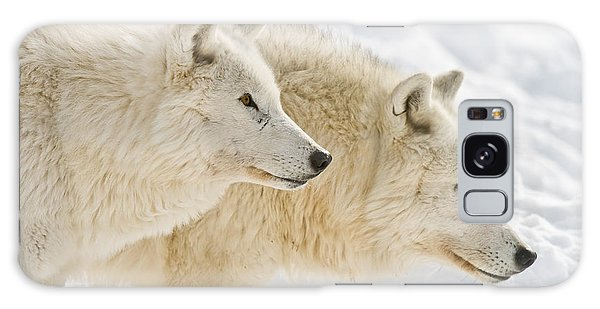 Arctic Wolves Galaxy Case