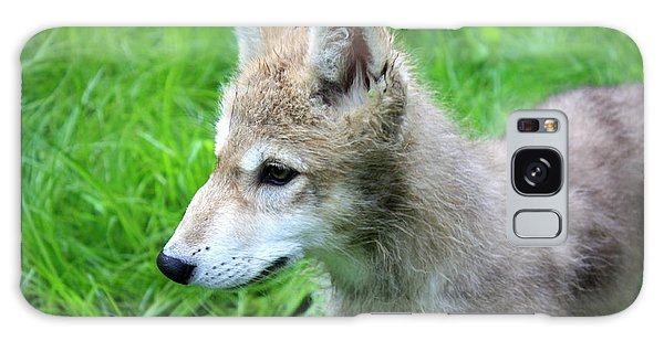 Gray Wolf Pup Galaxy Case