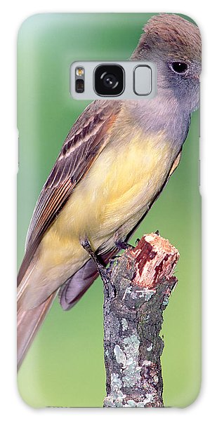 Great Crested Flycatcher Galaxy S8 Case