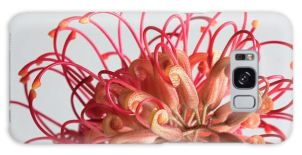 Grevillea Flower Galaxy Case by Shirley Mitchell