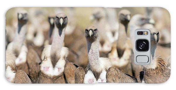 Griffon Vultures Galaxy Case