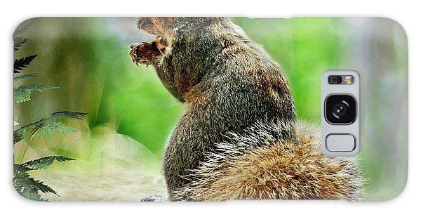 Harry The Squirrel Galaxy Case