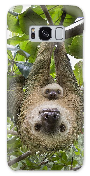 Galaxy Case featuring the photograph Hoffmanns Two-toed Sloth And Old Baby by Suzi Eszterhas
