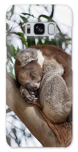 Koala (phascolarctos Cinereus Galaxy Case by Martin Zwick