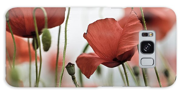 Summertime Galaxy Case - Red Poppy Flowers by Nailia Schwarz