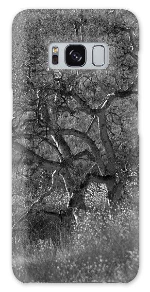 50 Shades Of Gray Trees Galaxy Case