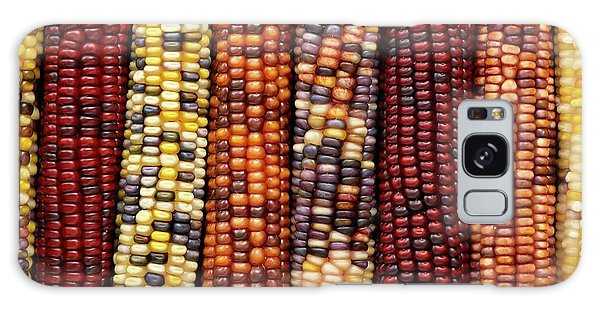 Indian Corn Galaxy Case - Flint Corn by Science Photo Library