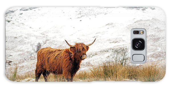 Highland Galaxy Case - Highland Cow by Grant Glendinning